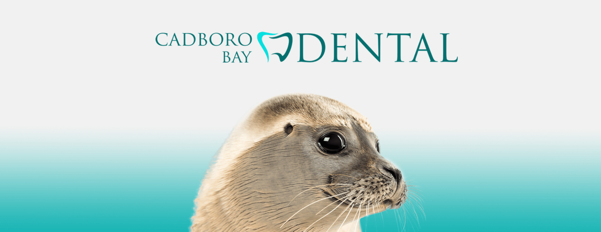 Cadboro Bay Dentist, Victoria BC | Cadboro Bay Dental